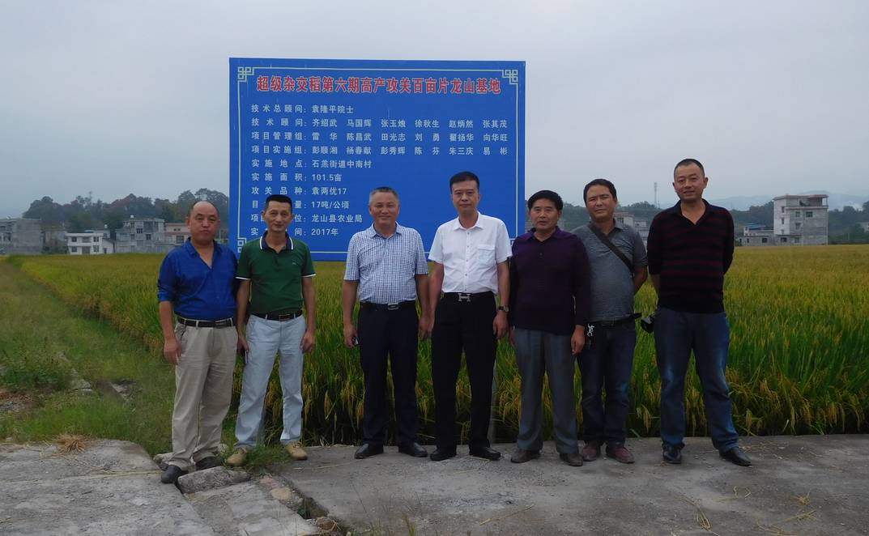 飞速直播吧cba与国家杂交水稻工程技术中心的试验项目喜获成功